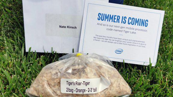کیت بازاریابی Tiger Lake