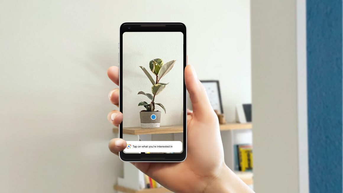 میخواهید اطلاعاتی درمورد یک گیاه بدست آورید و با نشان دادن تصویر آن گیاه Google Lens می تواند بلافاصله آن گونه را شناسایی کند و اطلاعات کاملی درمورد آن بدهد.